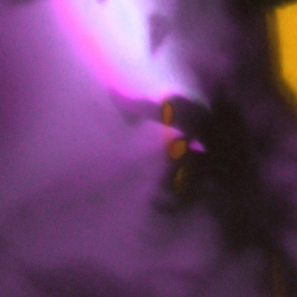 HM_yellow-purple-ceiling-shadow-3