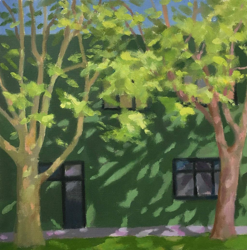 Bronte-Plane-Trees-30x30cm-oil_paper_board-2016