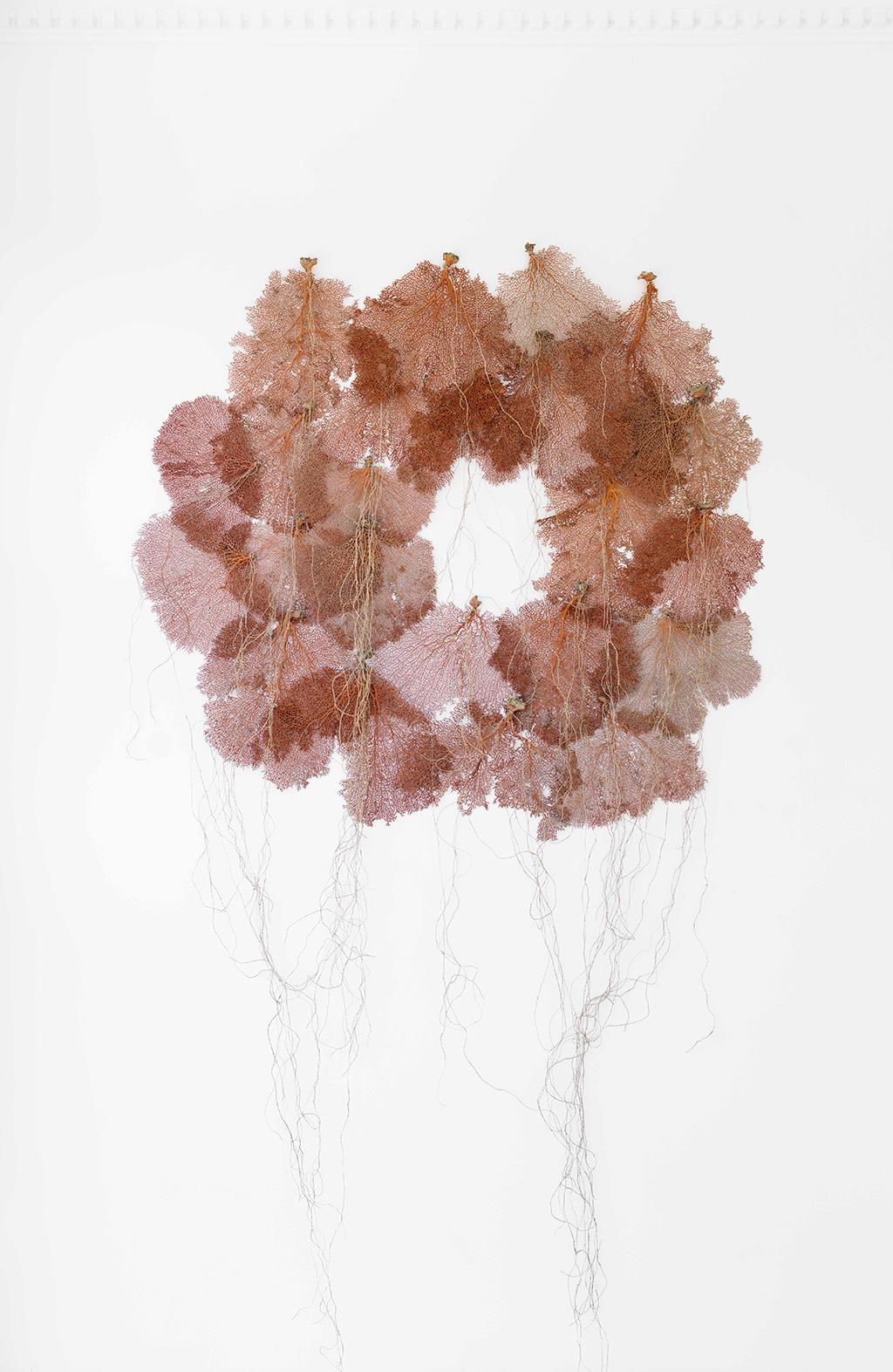 Coral-Reef,-coral,-hemp,-216x120x5cm,-$8800