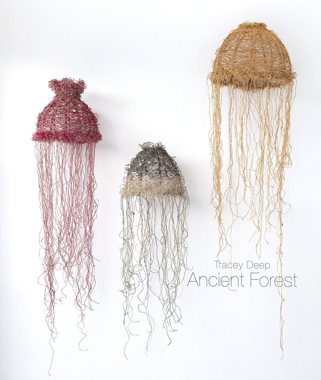 FS—ANCIENT-FOREST_233