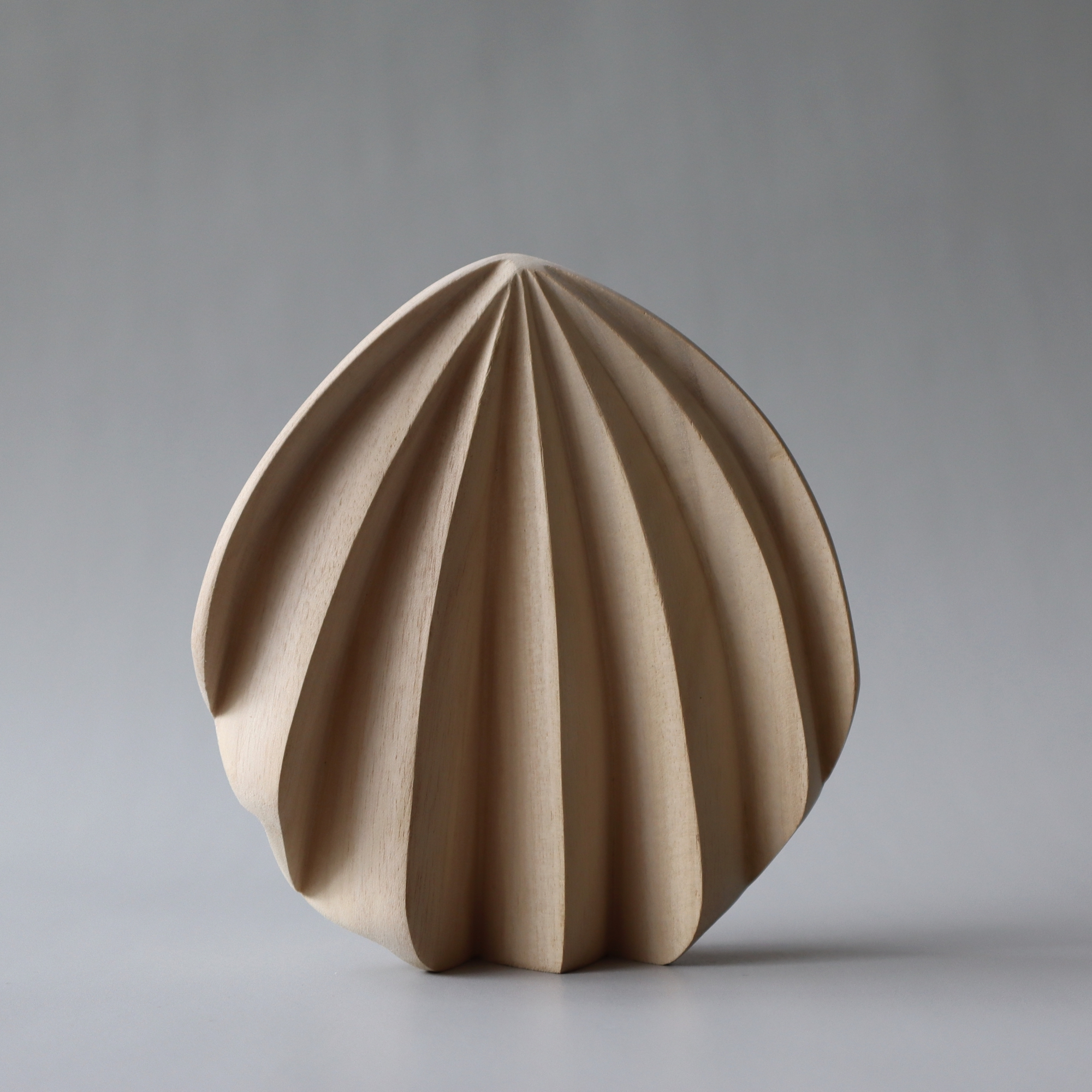 Pleated Shell-1